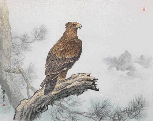 壁纸 动物 鸟 鸟类 雀 桌面 500_395